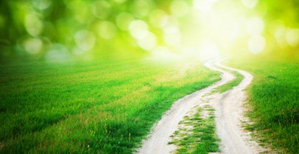 Dieu t'instruira et te montrera la voie que tu dois suivre - Michelle