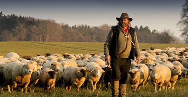 Yahvé-Raah, l'Eternel est mon berger